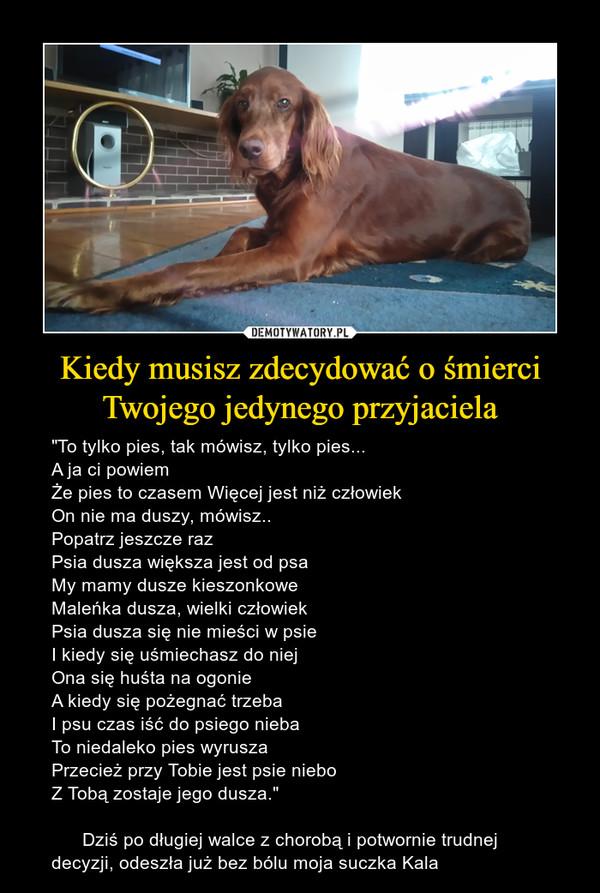 """Kiedy musisz zdecydować o śmierci Twojego jedynego przyjaciela – """"To tylko pies, tak mówisz, tylko pies...A ja ci powiemŻe pies to czasem Więcej jest niż człowiekOn nie ma duszy, mówisz..Popatrz jeszcze razPsia dusza większa jest od psaMy mamy dusze kieszonkoweMaleńka dusza, wielki człowiekPsia dusza się nie mieści w psieI kiedy się uśmiechasz do niejOna się huśta na ogonieA kiedy się pożegnać trzebaI psu czas iść do psiego niebaTo niedaleko pies wyruszaPrzecież przy Tobie jest psie niebo Z Tobą zostaje jego dusza.""""         Dziś po długiej walce z chorobą i potwornie trudnej decyzji, odeszła już bez bólu moja suczka Kala"""