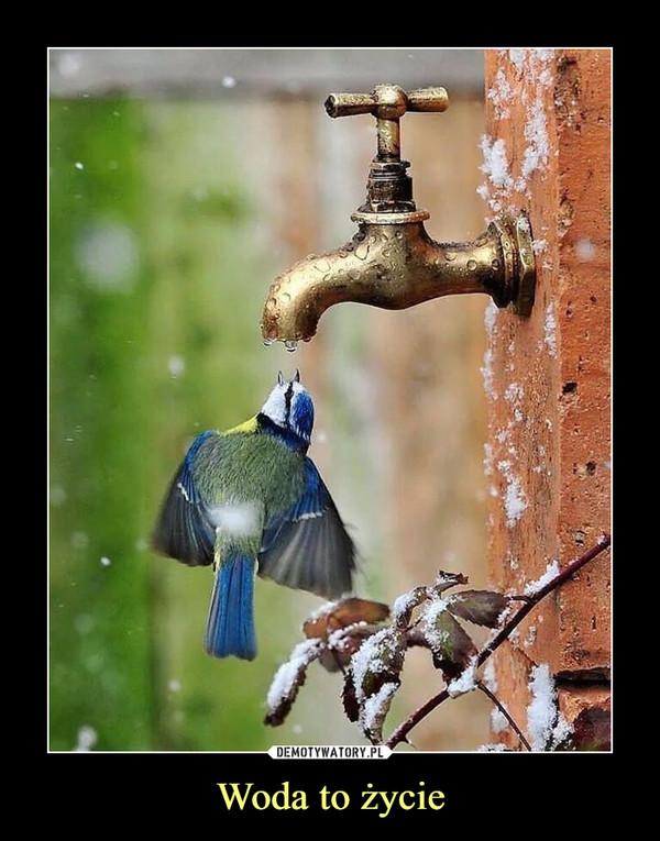 Woda to życie –