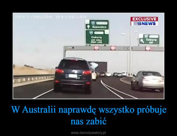 W Australii naprawdę wszystko próbuje nas zabić –