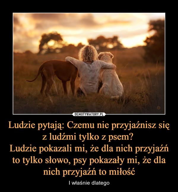 Ludzie pytają: Czemu nie przyjaźnisz się z ludźmi tylko z psem? Ludzie pokazali mi, że dla nich przyjaźń to tylko słowo, psy pokazały mi, że dla nich przyjaźń to miłość – I właśnie dlatego