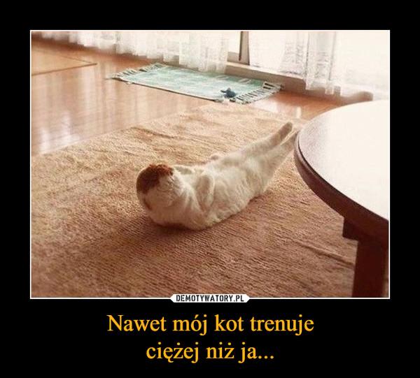 Nawet mój kot trenujeciężej niż ja... –