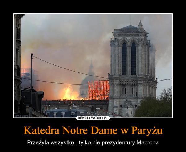 Katedra Notre Dame w Paryżu – Przeżyła wszystko,  tylko nie prezydentury Macrona