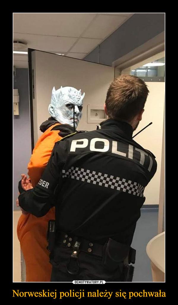 Norweskiej policji należy się pochwała –