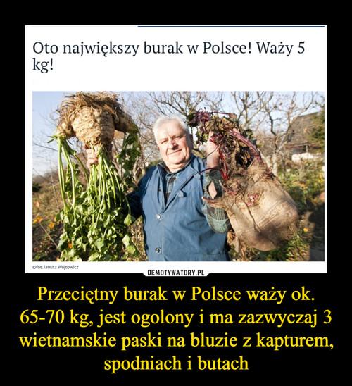 Przeciętny burak w Polsce waży ok. 65-70 kg, jest ogolony i ma zazwyczaj 3 wietnamskie paski na bluzie z kapturem, spodniach i butach