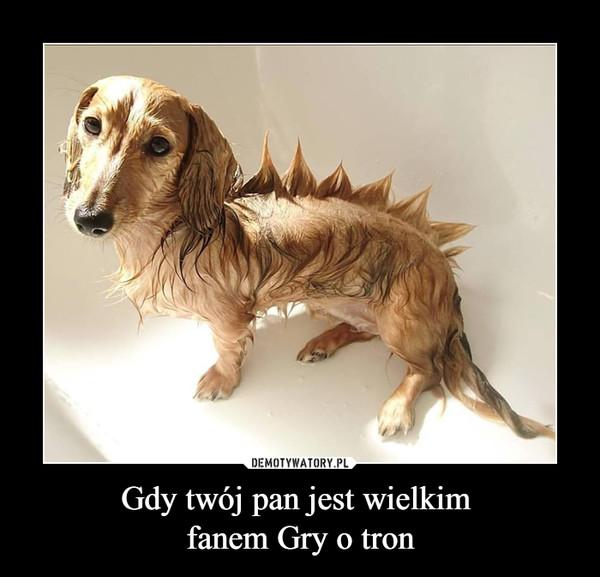 Gdy twój pan jest wielkim fanem Gry o tron –