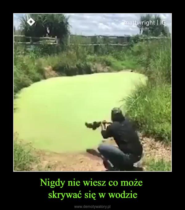 Nigdy nie wiesz co może skrywać się w wodzie –