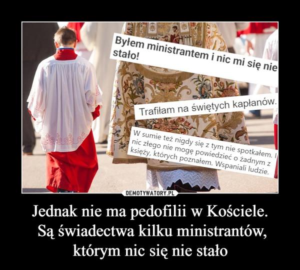 Jednak nie ma pedofilii w Kościele. Są świadectwa kilku ministrantów, którym nic się nie stało –