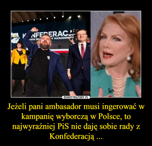 Jeżeli pani ambasador musi ingerować w kampanię wyborczą w Polsce, to najwyraźniej PiS nie daję sobie rady z Konfederacją ...
