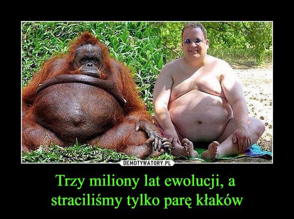 Trzy miliony lat ewolucji, a straciliśmy tylko parę kłaków –