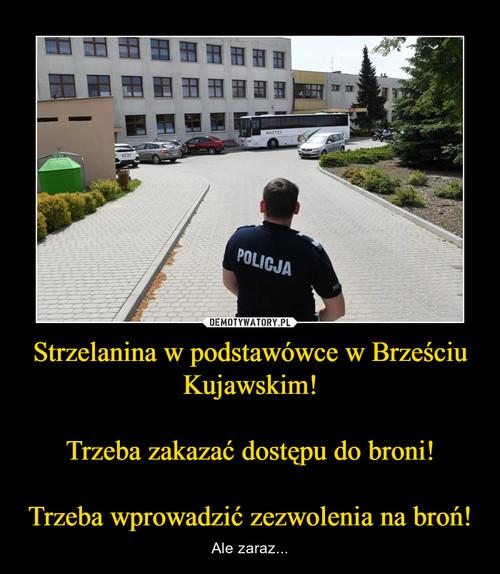Strzelanina w podstawówce w Brześciu Kujawskim!  Trzeba zakazać dostępu do broni!  Trzeba wprowadzić zezwolenia na broń!