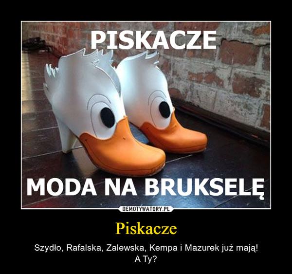 Piskacze – Szydło, Rafalska, Zalewska, Kempa i Mazurek już mają!A Ty?