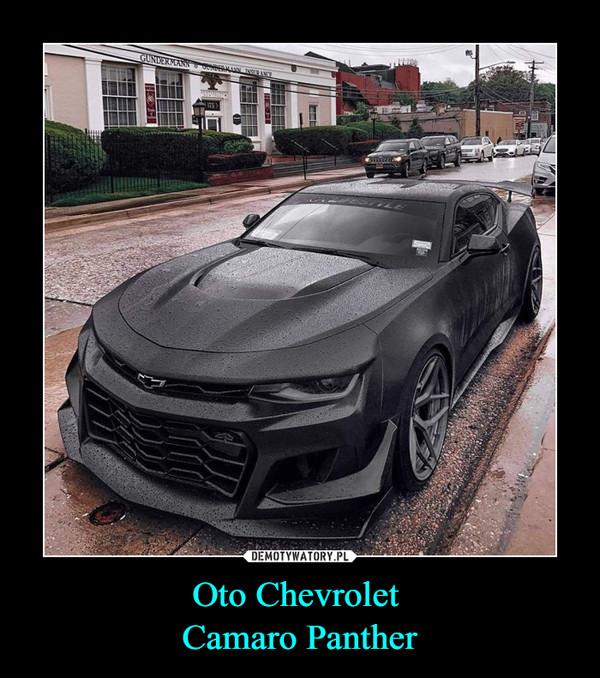 Oto Chevrolet Camaro Panther –