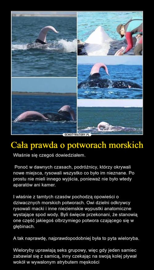 Cała prawda o potworach morskich