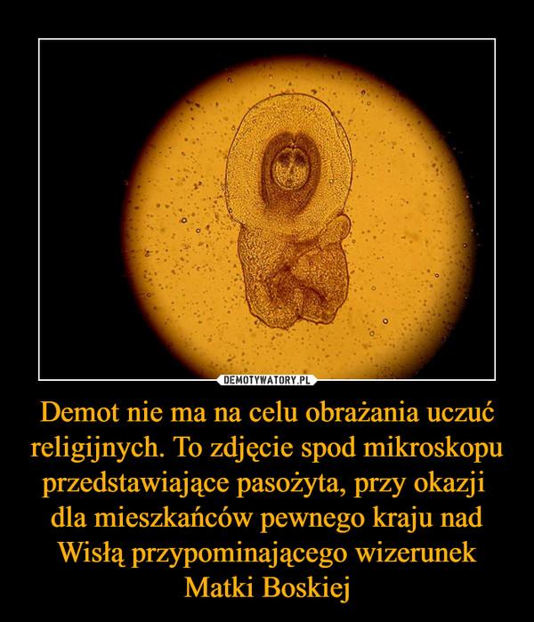 Demot nie ma na celu obrażania uczuć religijnych. To zdjęcie spod mikroskopu przedstawiające pasożyta, przy okazji  dla mieszkańców pewnego kraju nad Wisłą przypominającego wizerunek Matki Boskiej –