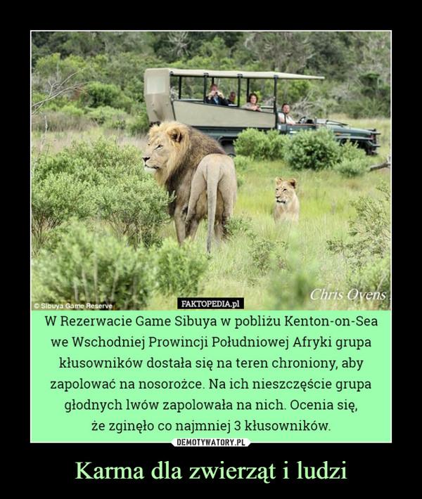 Karma dla zwierząt i ludzi –  Chris OvensSibuya Game ReserveFAKTOPEDIA.plW Rezerwacie Game Sibuya w pobliżu Kenton-on-Seawe Wschodniej Prowincji Południowej Afryki grupakłusowników dostała się na teren chroniony, abyzapolować na nosorożce. Na ich nieszczęście grupaglodnych lwów zapolowała na nich. Ocenia się,że zginęło co najmniej 3 kłusowników.