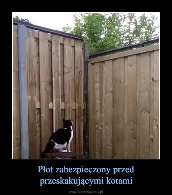 Płot zabezpieczony przed przeskakującymi kotami –