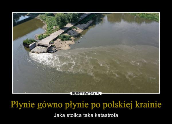 Płynie gówno płynie po polskiej krainie – Jaka stolica taka katastrofa