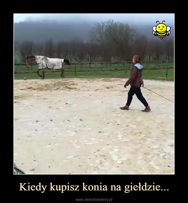 Kiedy kupisz konia na giełdzie... –