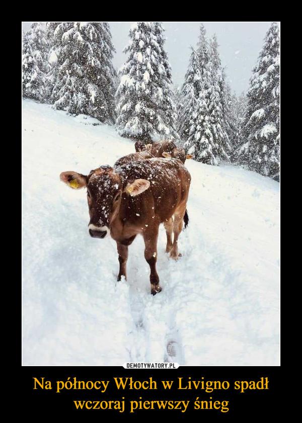 Na północy Włoch w Livigno spadł wczoraj pierwszy śnieg –