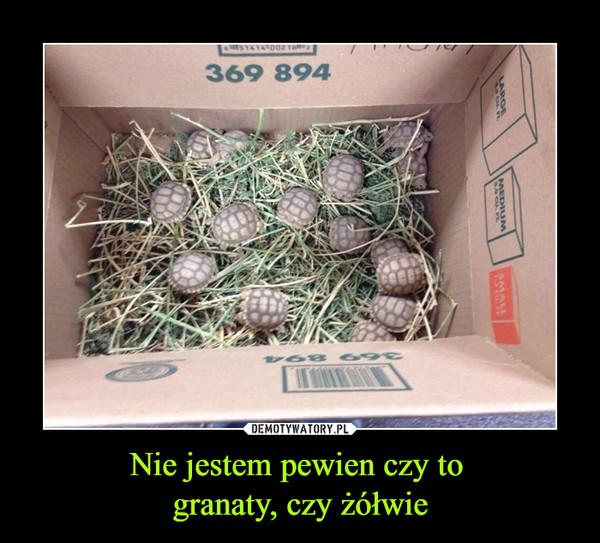 Nie jestem pewien czy to granaty, czy żółwie –