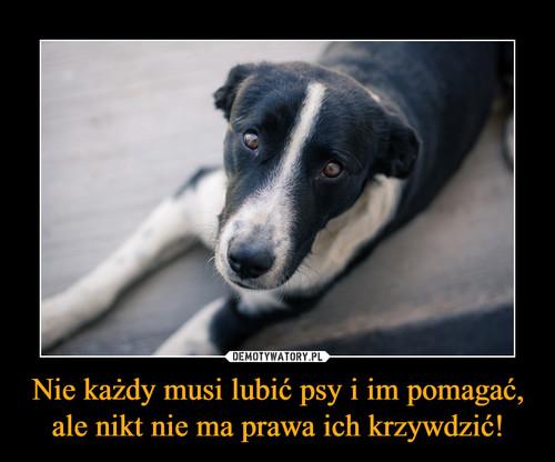 Nie każdy musi lubić psy i im pomagać, ale nikt nie ma prawa ich krzywdzić!