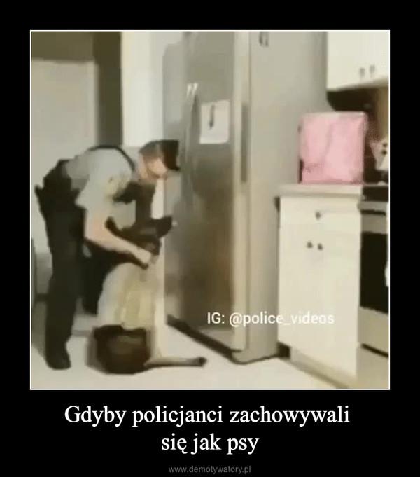 Gdyby policjanci zachowywali się jak psy –