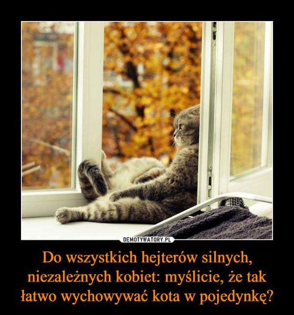 Do wszystkich hejterów silnych, niezależnych kobiet: myślicie, że tak łatwo wychowywać kota w pojedynkę? –