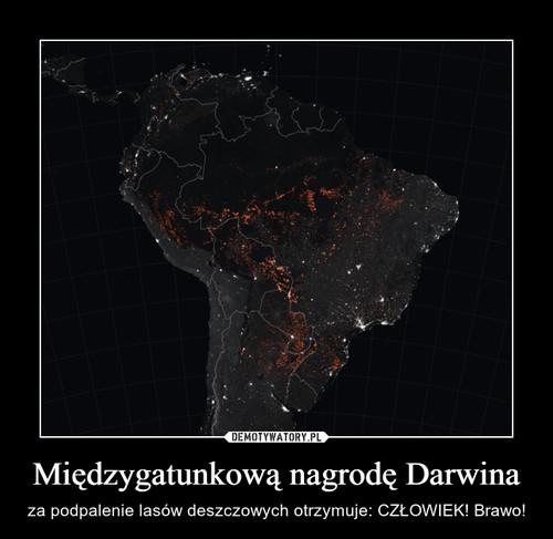 Międzygatunkową nagrodę Darwina