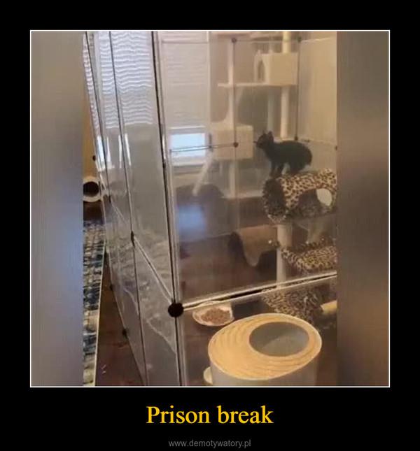 Prison break –