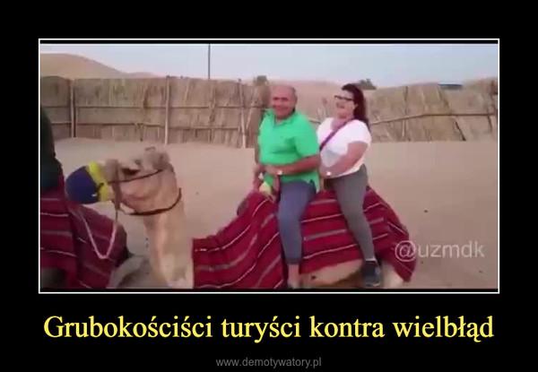 Grubokościści turyści kontra wielbłąd –