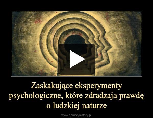 Zaskakujące eksperymenty psychologiczne, które zdradzają prawdę o ludzkiej naturze –
