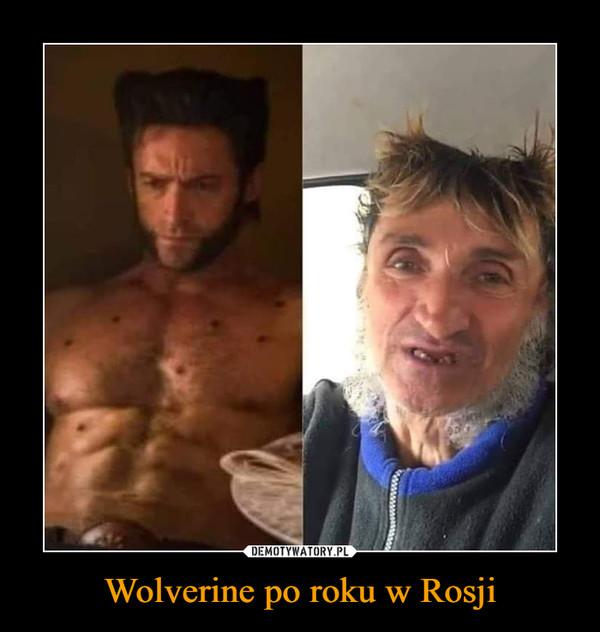 Wolverine po roku w Rosji –