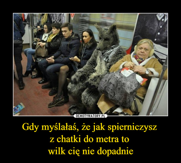 Gdy myślałaś, że jak spierniczysz z chatki do metra to wilk cię nie dopadnie –