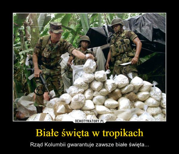 Białe święta w tropikach – Rząd Kolumbii gwarantuje zawsze białe święta...