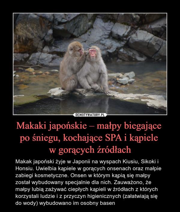 Makaki japońskie – małpy biegające po śniegu, kochające SPA i kąpiele w gorących źródłach – Makak japoński żyje w Japonii na wyspach Kiusiu, Sikoki i Honsiu. Uwielbia kąpiele w gorących onsenach oraz małpie zabiegi kosmetyczne. Onsen w którym kąpią się małpy został wybudowany specjalnie dla nich. Zauważono, że małpy lubią zażywać ciepłych kąpieli w źródłach z których korzystali ludzie i z przyczyn higienicznych (załatwiają się do wody) wybudowano im osobny basen