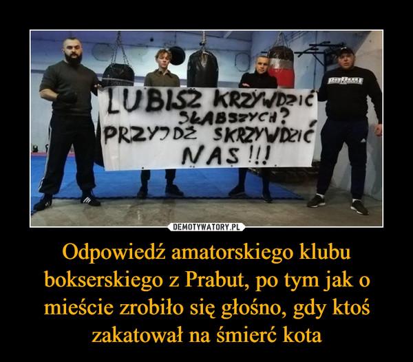 Odpowiedź amatorskiego klubu bokserskiego z Prabut, po tym jak o mieście zrobiło się głośno, gdy ktoś zakatował na śmierć kota –