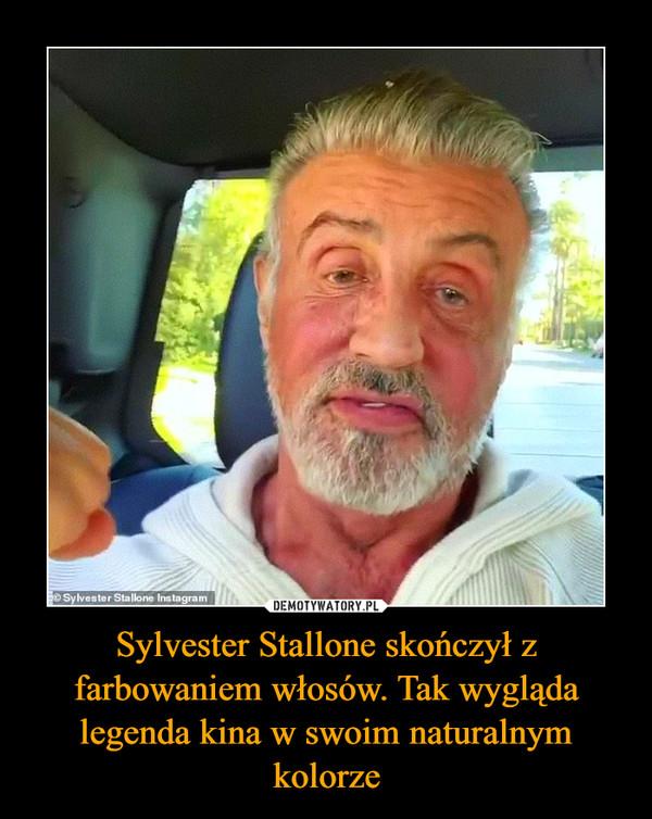 Sylvester Stallone skończył z farbowaniem włosów. Tak wygląda legenda kina w swoim naturalnym kolorze –