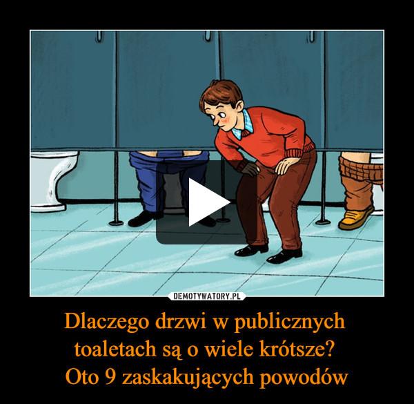 Dlaczego drzwi w publicznych toaletach są o wiele krótsze? Oto 9 zaskakujących powodów –