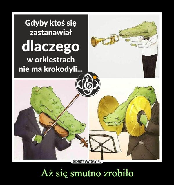Aż się smutno zrobiło –  Gdyby ktoś sięzastanawiałdlaczegow orkiestrachnie ma krokodyli..