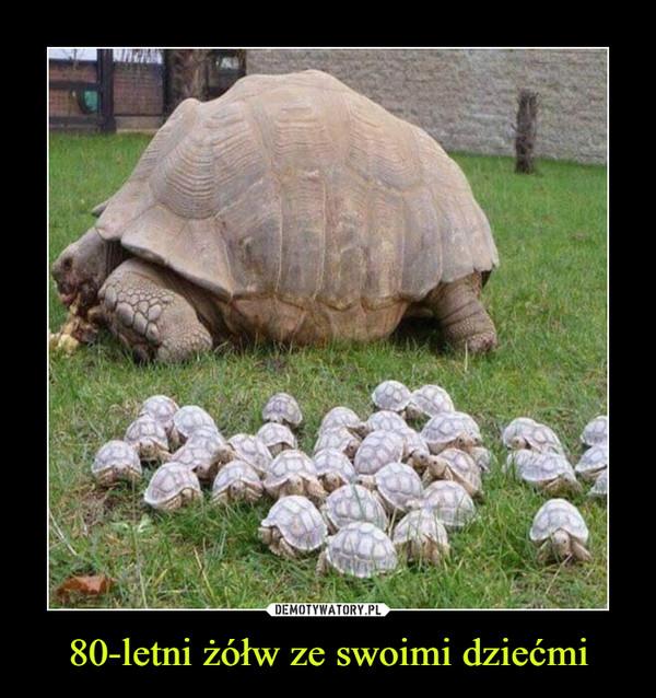 80-letni żółw ze swoimi dziećmi –