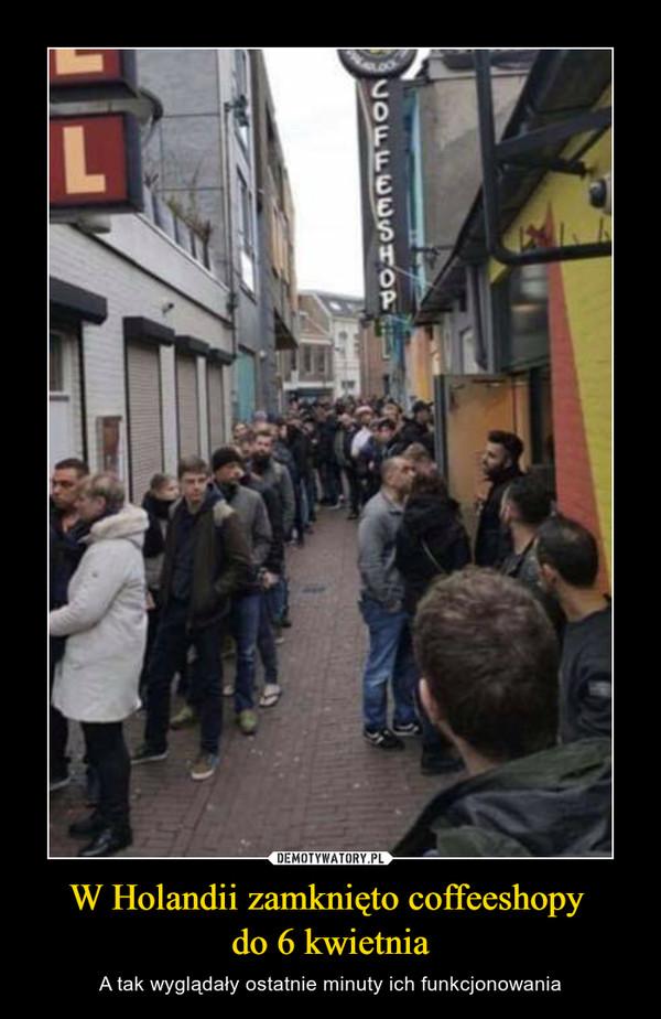 W Holandii zamknięto coffeeshopy do 6 kwietnia – A tak wyglądały ostatnie minuty ich funkcjonowania
