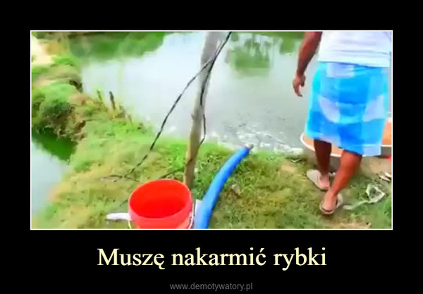 Muszę nakarmić rybki –