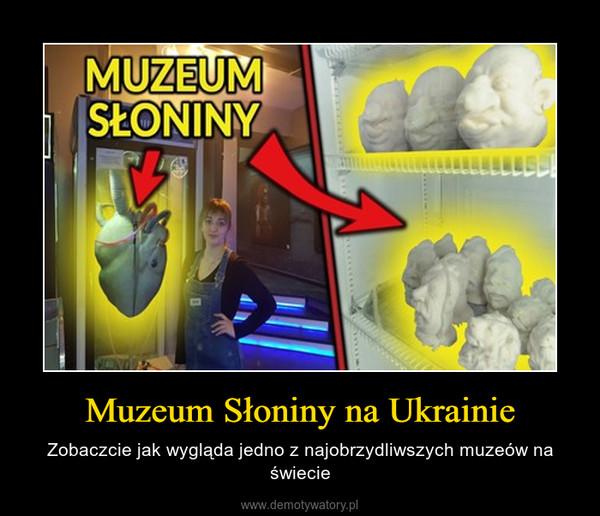 Muzeum Słoniny na Ukrainie – Zobaczcie jak wygląda jedno z najobrzydliwszych muzeów na świecie