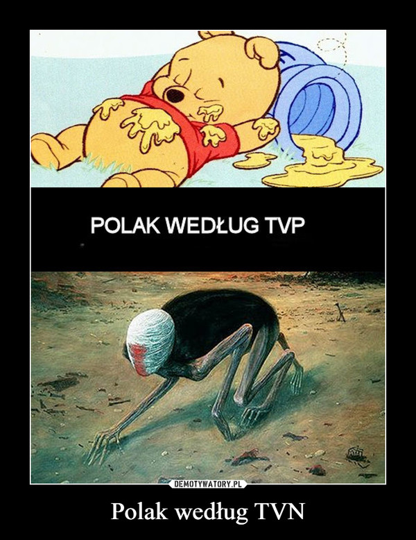 Polak według TVN –