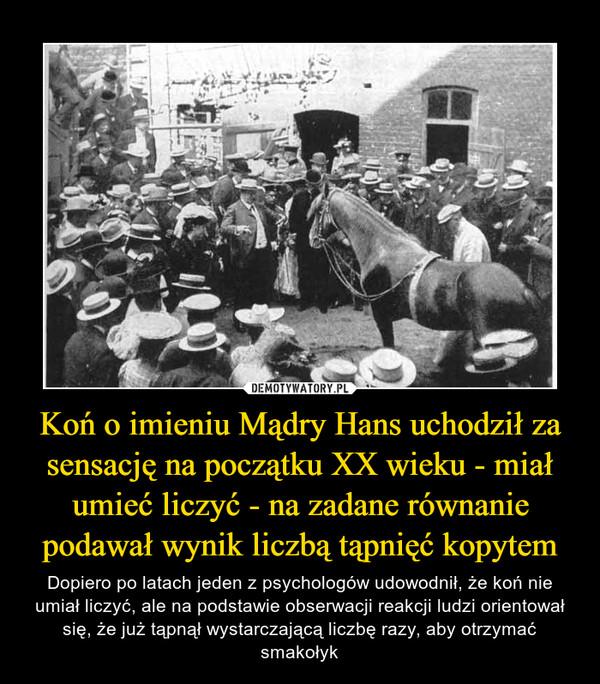 Koń o imieniu Mądry Hans uchodził za sensację na początku XX wieku - miał umieć liczyć - na zadane równanie podawał wynik liczbą tąpnięć kopytem – Dopiero po latach jeden z psychologów udowodnił, że koń nie umiał liczyć, ale na podstawie obserwacji reakcji ludzi orientował się, że już tąpnął wystarczającą liczbę razy, aby otrzymać smakołyk