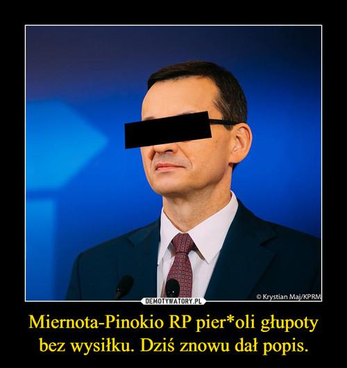 Miernota-Pinokio RP pier*oli głupoty bez wysiłku. Dziś znowu dał popis.