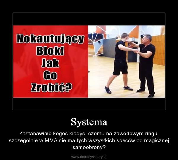 Systema – Zastanawiało kogoś kiedyś, czemu na zawodowym ringu, szczególnie w MMA nie ma tych wszystkich speców od magicznej samoobrony?