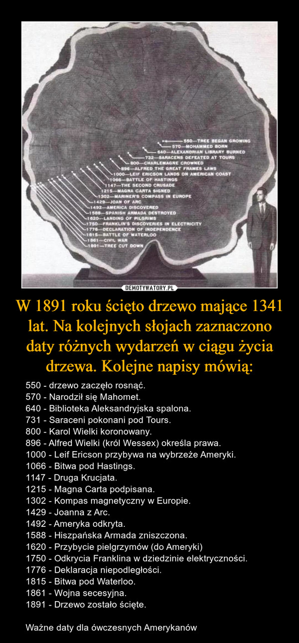 W 1891 roku ścięto drzewo mające 1341 lat. Na kolejnych słojach zaznaczono daty różnych wydarzeń w ciągu życia drzewa. Kolejne napisy mówią: – 550 - drzewo zaczęło rosnąć.570 - Narodził się Mahomet.640 - Biblioteka Aleksandryjska spalona.731 - Saraceni pokonani pod Tours.800 - Karol Wielki koronowany.896 - Alfred Wielki (król Wessex) określa prawa.1000 - Leif Ericson przybywa na wybrzeże Ameryki.1066 - Bitwa pod Hastings.1147 - Druga Krucjata.1215 - Magna Carta podpisana.1302 - Kompas magnetyczny w Europie.1429 - Joanna z Arc.1492 - Ameryka odkryta.1588 - Hiszpańska Armada zniszczona.1620 - Przybycie pielgrzymów (do Ameryki)1750 - Odkrycia Franklina w dziedzinie elektryczności.1776 - Deklaracja niepodległości.1815 - Bitwa pod Waterloo.1861 - Wojna secesyjna.1891 - Drzewo zostało ścięte.Ważne daty dla ówczesnych Amerykanów