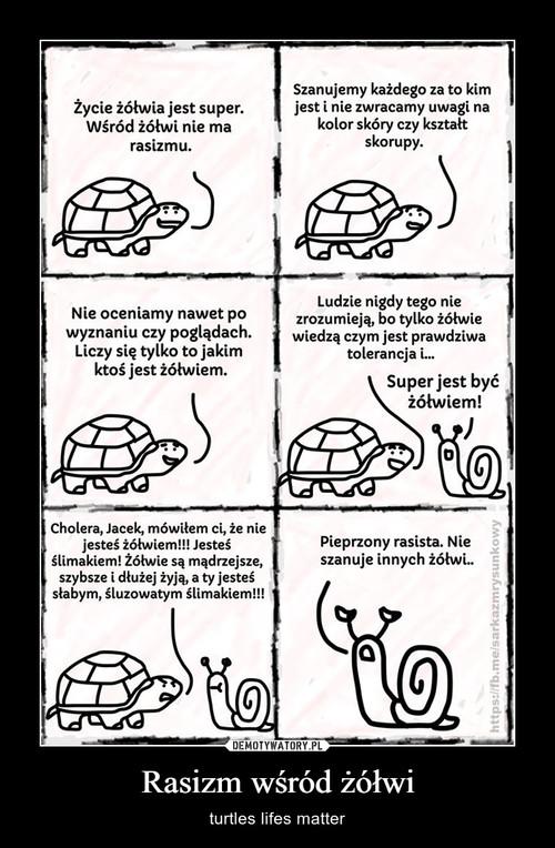 Rasizm wśród żółwi