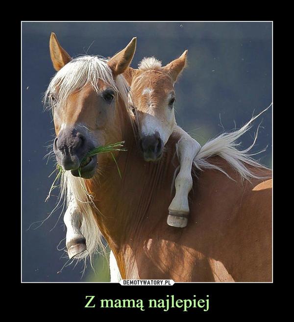 Z mamą najlepiej –